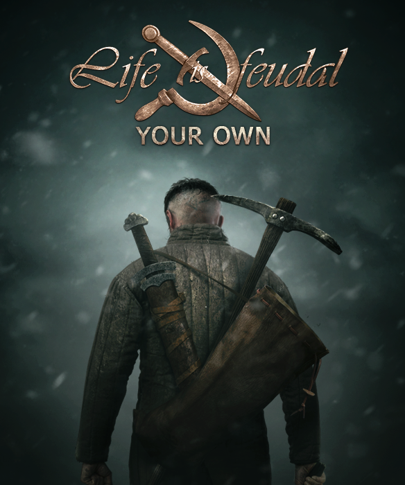 Life is Feudal: Your Own (2014)